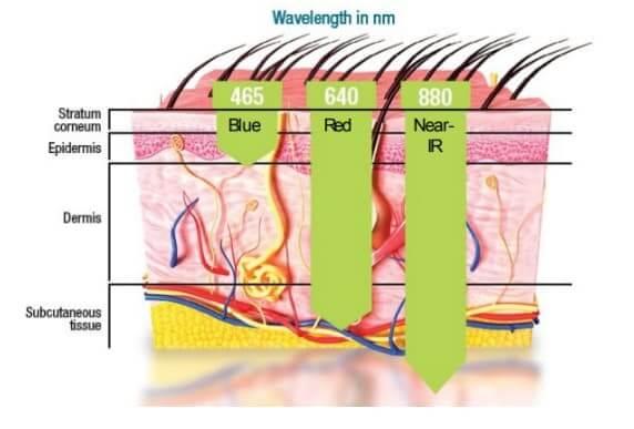 How does celluma work?